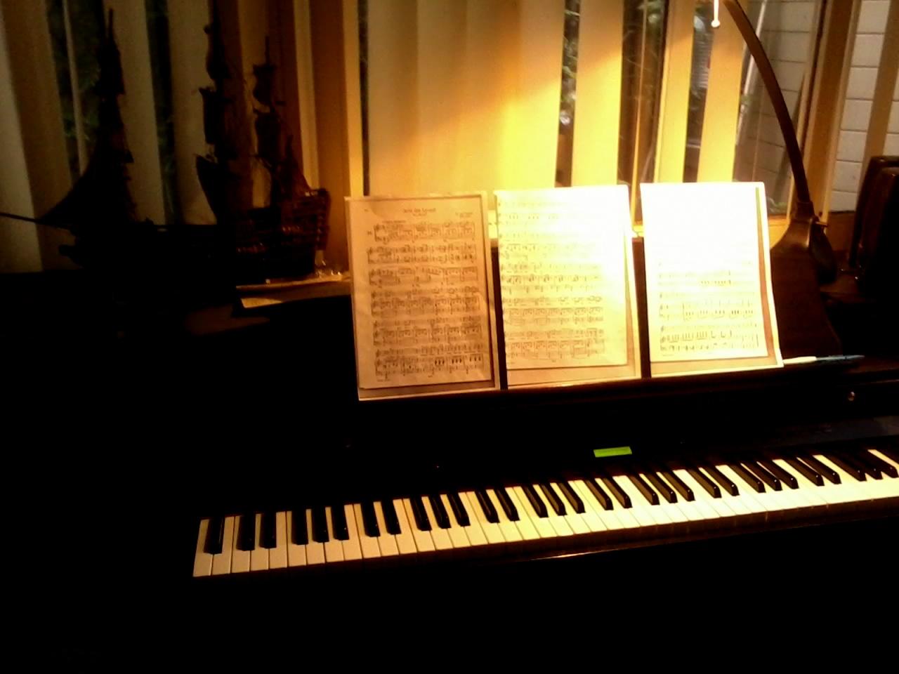 Répétition pianistologique
