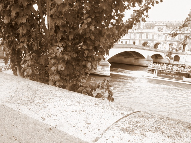 La Seine est morne