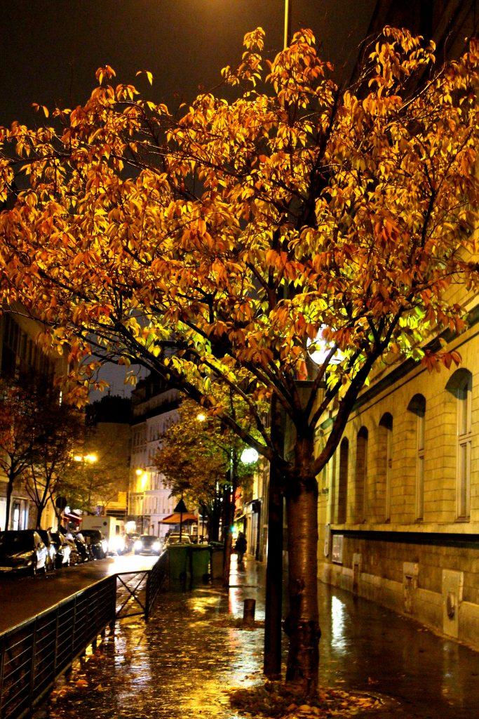 Paris en novembre